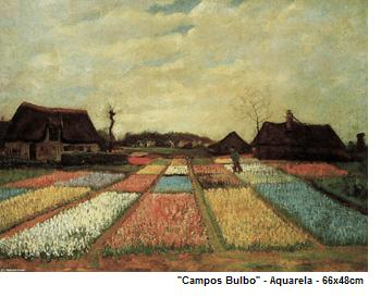 campos bulbo
