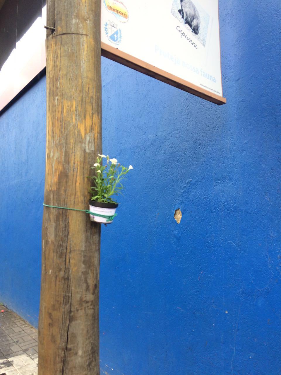 Floreiras Mairipora 01-17 (1)