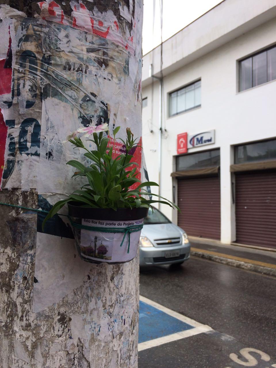 Floreiras Mairipora 01-17 (13)