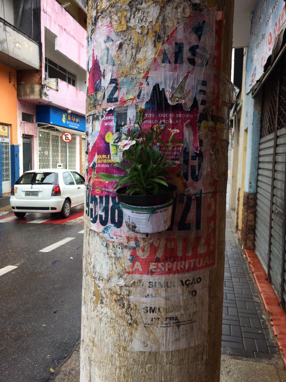 Floreiras Mairipora 01-17 (16)