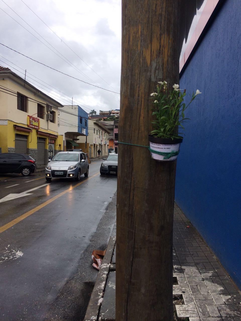 Floreiras Mairipora 01-17 (17)