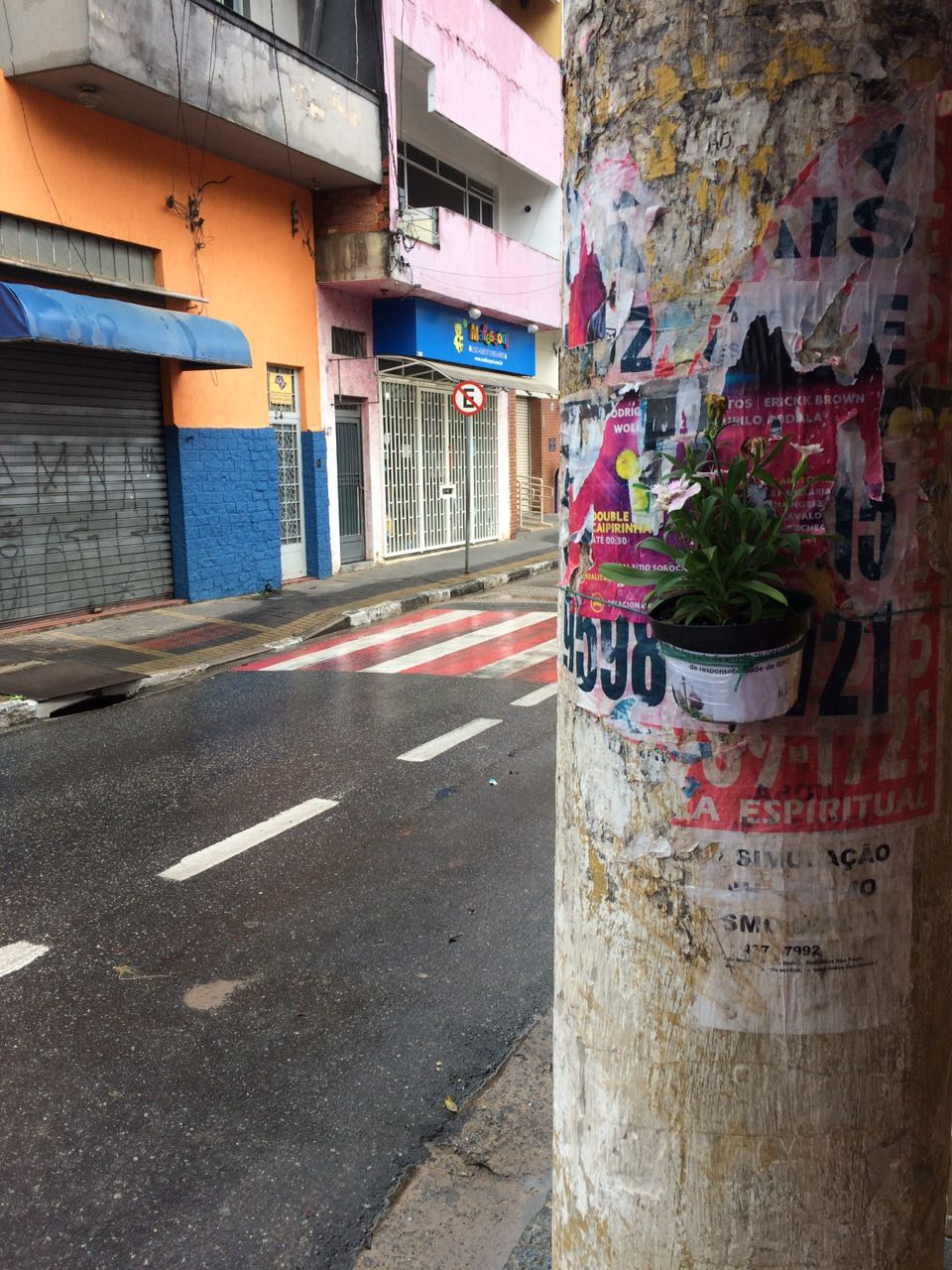 Floreiras Mairipora 01-17 (20)