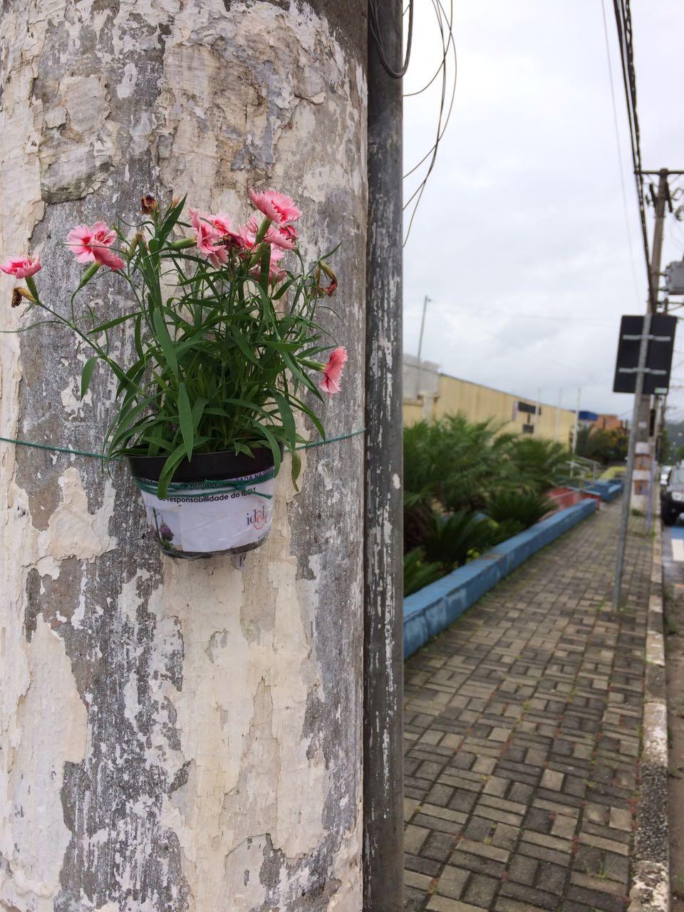 Floreiras Mairipora 01-17 (9)